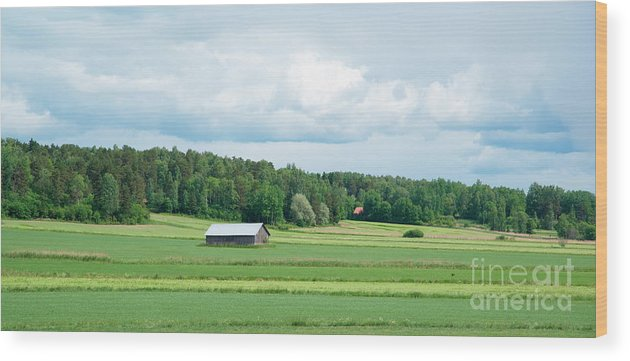 Barn Wood Print featuring the photograph Landscape by Esko Lindell