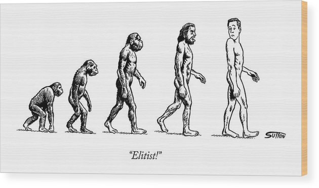 Evolution Of Man Wood Print featuring the drawing Elitist! by Ward Sutton