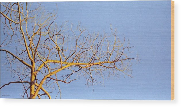 Aspen Painting Wood Print featuring the painting Aspen In The Autumn Sun by Elaine Booth-Kallweit