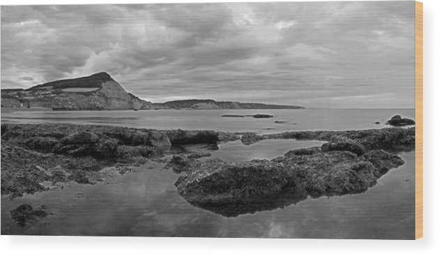 Ladram Bay Wood Print featuring the photograph Ladram Bay And Sidmouth by Pete Hemington