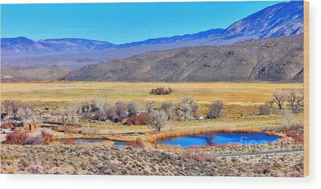 White Mountain Wood Print featuring the photograph Old Benton View by Marilyn Diaz