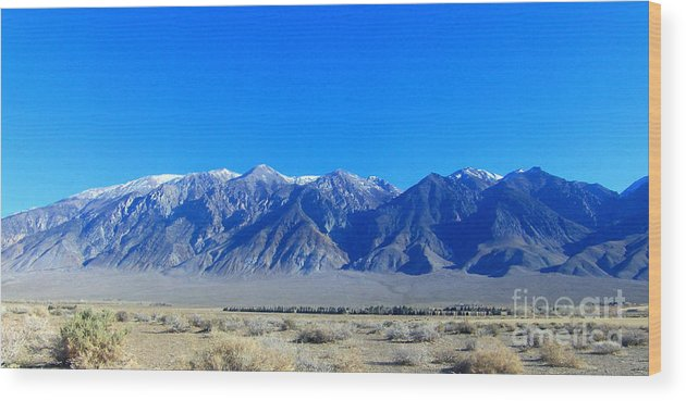 Sky Wood Print featuring the photograph Valley Living by Marilyn Diaz