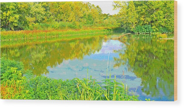 Autumn Wood Print featuring the photograph Autumn Reflections by Jennifer Kelly