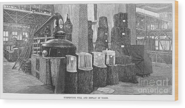 1883 Wood Print featuring the photograph Boston: Industrial Fair by Granger