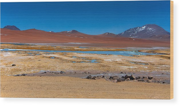 Laguna Miscanti Photographs Wood Print featuring the photograph Colorful Altiplano by Andre Distel