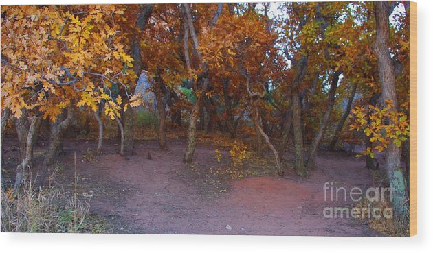 Trees Wood Print featuring the photograph Enchanted Woods by Brandi Christon