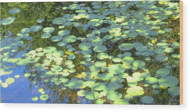 Water Photo Wood Print featuring the photograph Lilypads by Sarah Gayle Carter