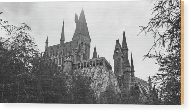 Hogsmeade Wood Print featuring the photograph Hogwarts Castle Black And White by Aimee L Maher ALM GALLERY