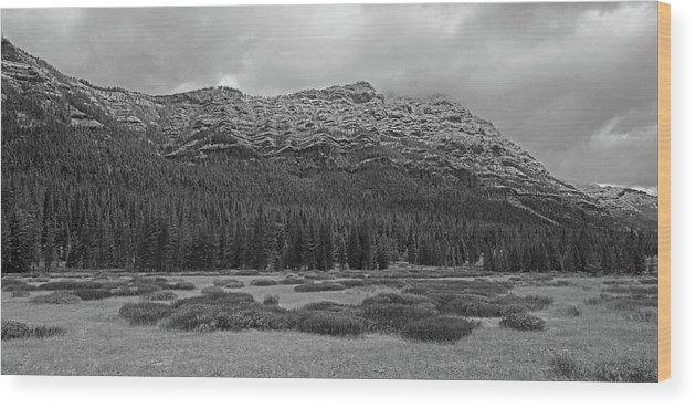 Mountain Wood Print featuring the photograph Morning Mountains In Yellowstone by Vincent Wille