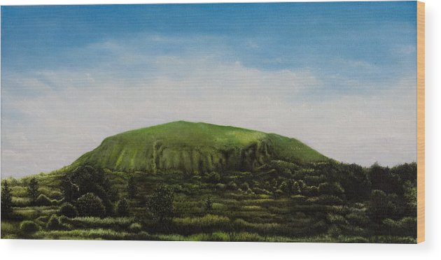 Landscape Wood Print featuring the painting Mount Coolum by Joe Michelli