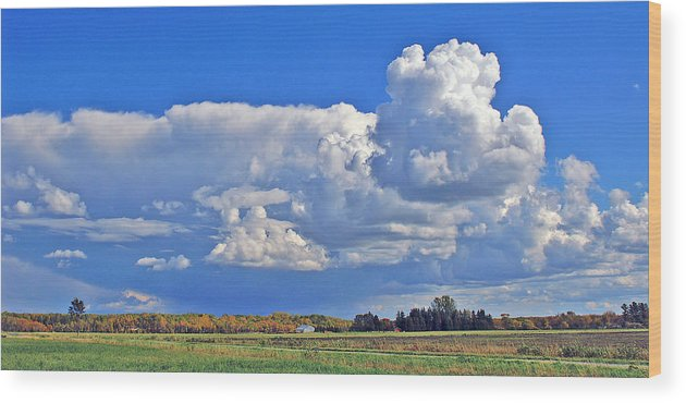 Landscape Wood Print featuring the photograph September Clouds by Bill Morgenstern