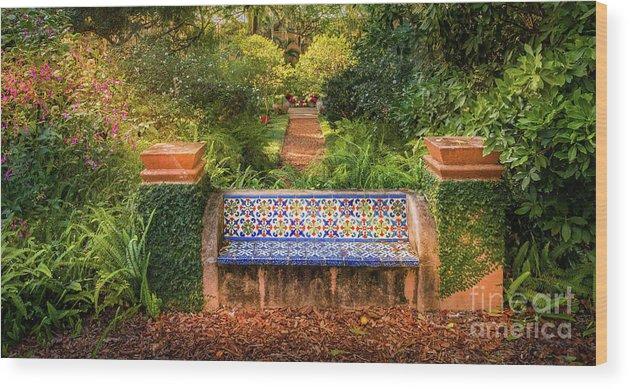 Cool Secret Garden Bench At Pinewood Estate Bok Tower 2 Wood Print Andrewgaddart Wooden Chair Designs For Living Room Andrewgaddartcom