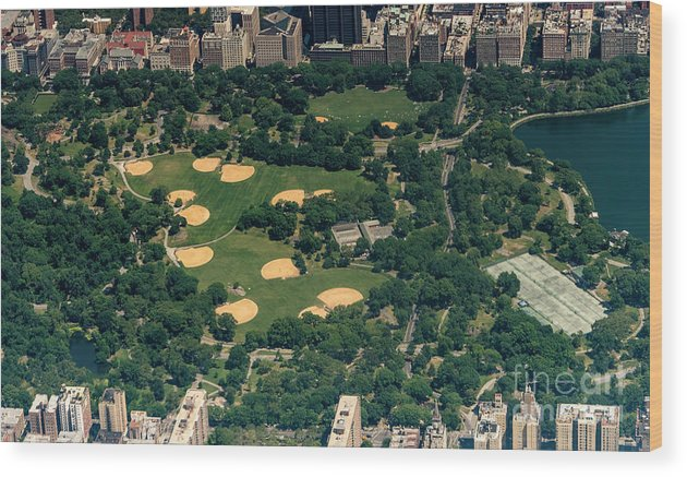 Central Park Wood Print featuring the photograph Central Park North Meadow In New York City Aerial View by David Oppenheimer