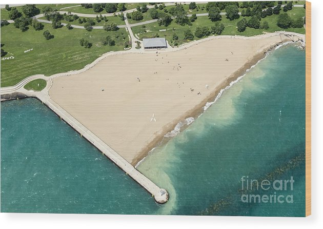 Montrose Beach Wood Print featuring the photograph Montrose Beach by David Oppenheimer
