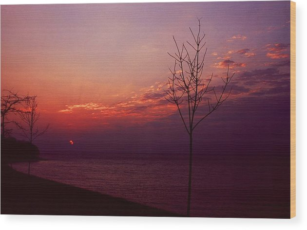 Sunset Wood Print featuring the photograph 112601-20 by Mike Davis