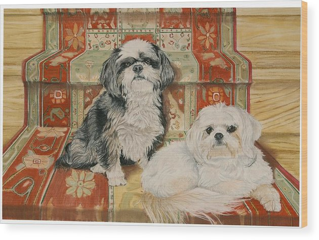 Shih Tzu Wood Print featuring the pastel On The Stairs by Barbara Keel