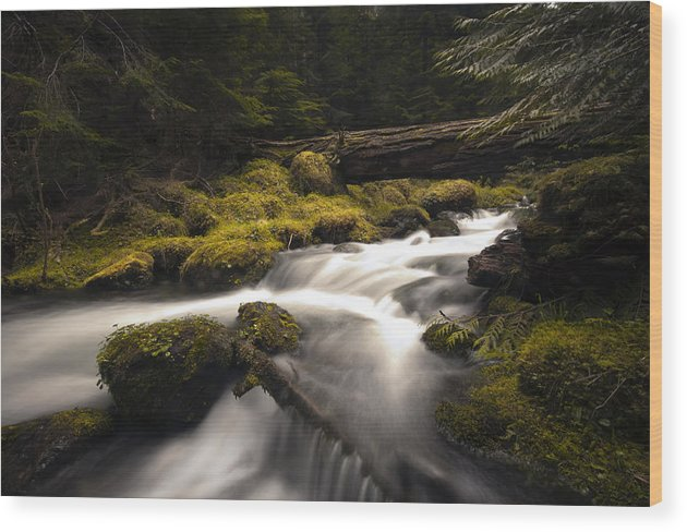 Streams Wood Print featuring the photograph Flowing Waters - Olympic National Park by Kevin Pate