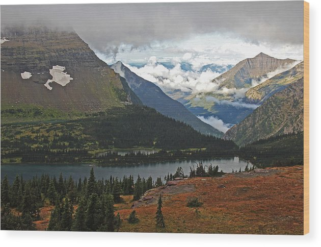 Greens Wood Print featuring the photograph Logan Pass Morning View by Kathleen Scanlan