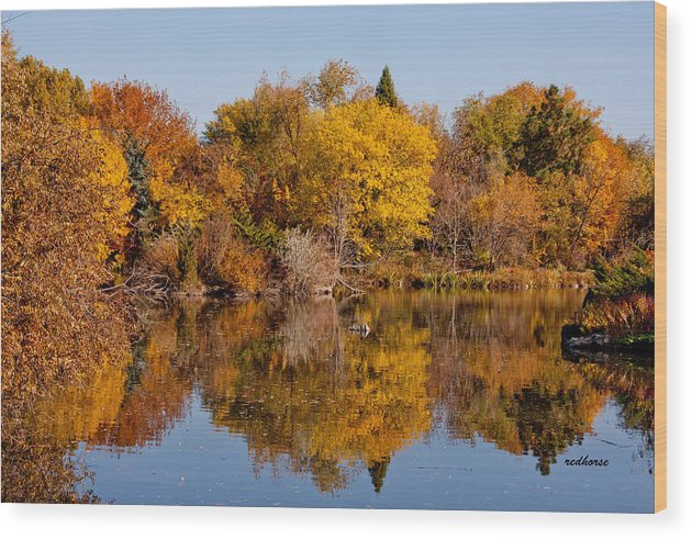 Landscape Wood Print featuring the photograph Oh Of Such Color by Jim Babb
