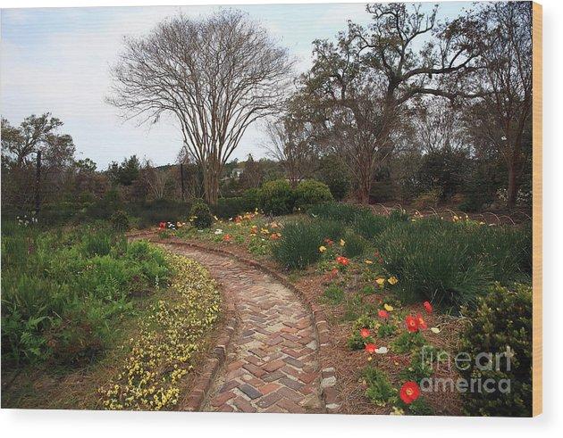 Plantation Garden Wood Print featuring the photograph Plantation Garden by John Rizzuto