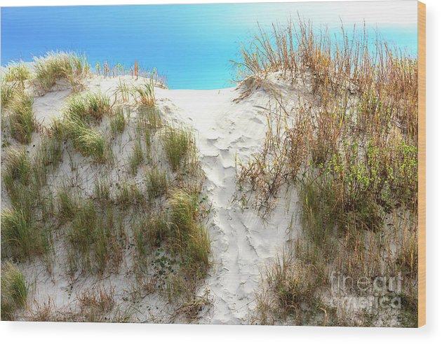 Sunset Beach Dune Wood Print featuring the photograph Sunset Beach Dune Path by John Rizzuto