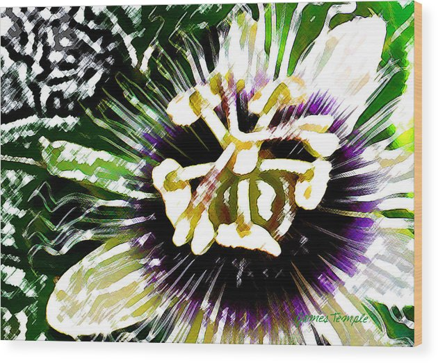 Passion Fruit Flower Wood Print featuring the digital art Passion Flower by James Temple