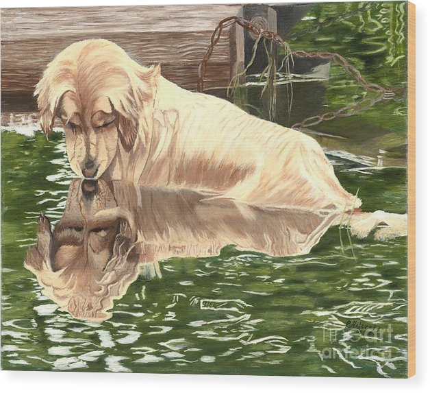 Dog Paintings Wood Print featuring the painting Reflections of Molly by Peggy Holcroft