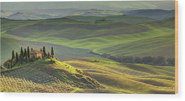 Scenics Wood Print featuring the photograph First Light In Tuscany by Maurice Ford