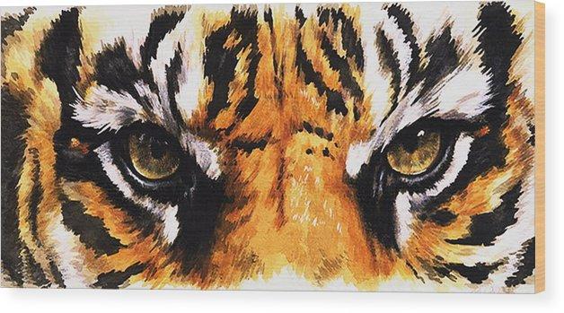 Feline Wood Print featuring the mixed media Sumatran Tiger Glare by Barbara Keith
