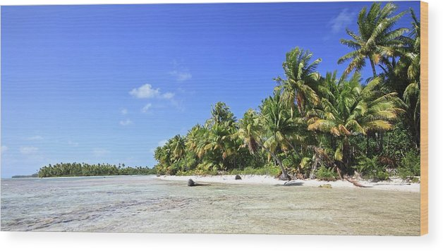 Tranquility Wood Print featuring the photograph Rangiroa - Isola Dei Coralli - Reef Isl by Loving And Living In This Planet