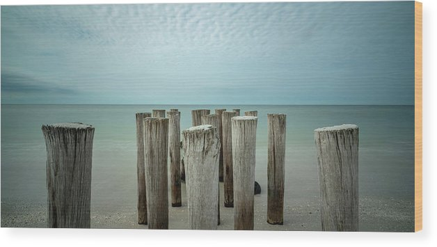 Naples Florida 2021 Wood Print featuring the photograph Naples Pilings 2021 by Joey Waves