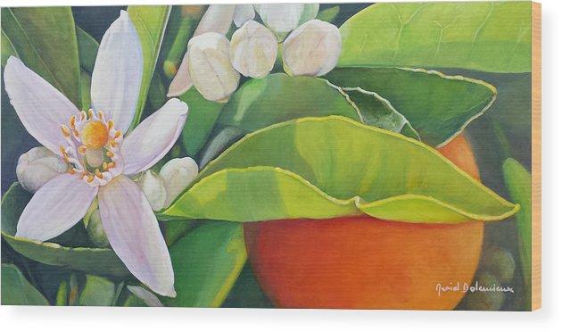Floral Painting Wood Print featuring the painting Boutons, Orange et Fleur by Muriel Dolemieux