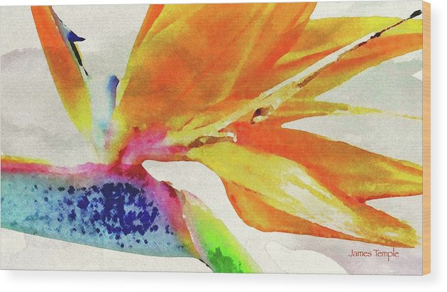 James Temple Watercolor Wood Print featuring the digital art Autumn In Hawaii by James Temple