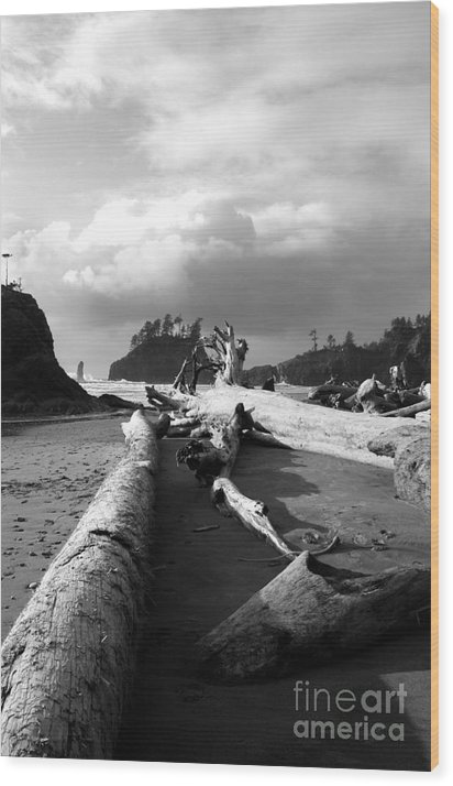 Ocean Wood Print featuring the photograph Drifters by Deena Otterstetter