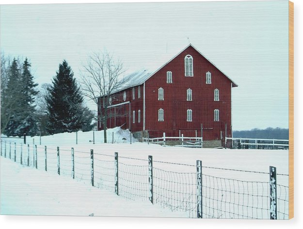 Barn Wood Print featuring the photograph 012909-7 by Mike Davis