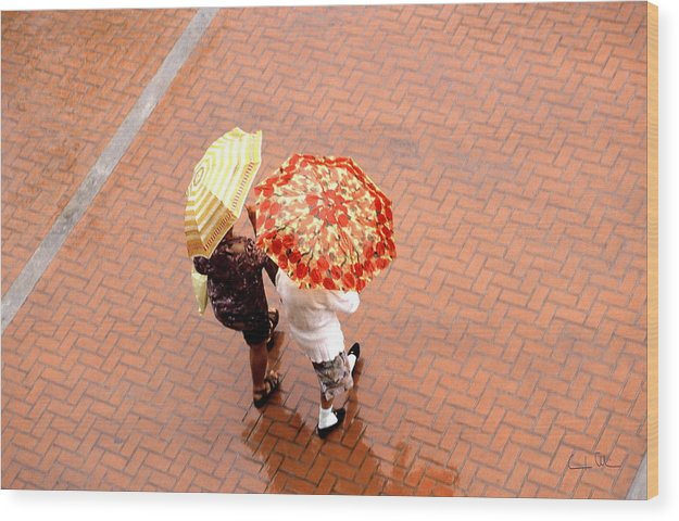 Rain Wood Print featuring the photograph Chatting In The Rain - Umbrellas Series 1 by Carlos Alvim