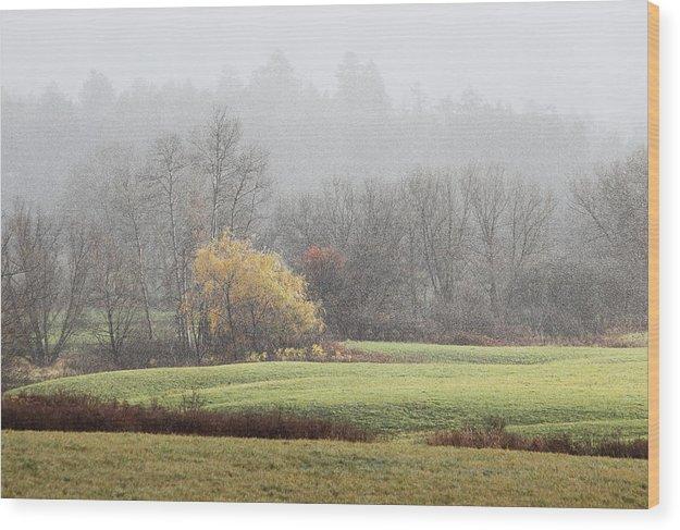 Snowy Wood Print featuring the photograph  by Josh Baldo