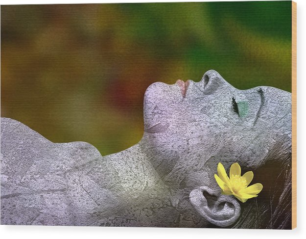 Atumn Wood Print featuring the digital art Fall Asleep by Tom Romeo