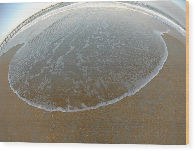 Seascape Wood Print featuring the photograph Skimmer by Victor Rugg