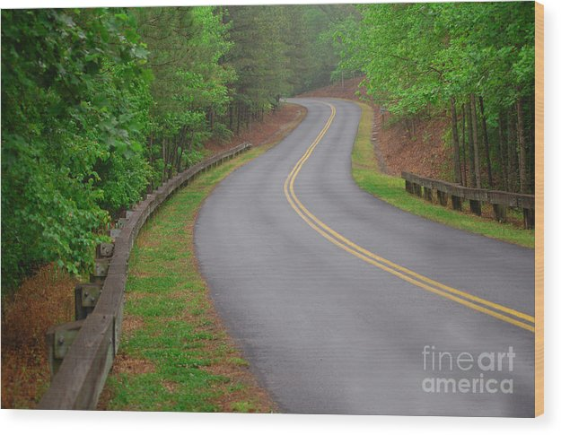 Nature Wood Print featuring the photograph Winding Road by David Smith