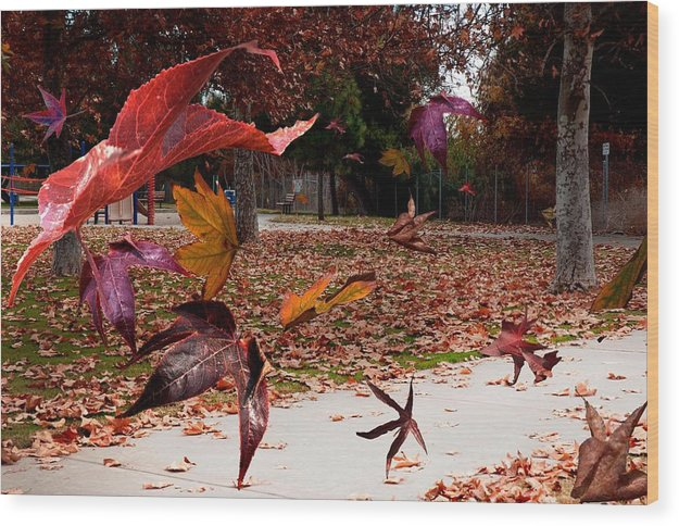 Landscape Wood Print featuring the photograph Autumn Wind by Richard Gordon