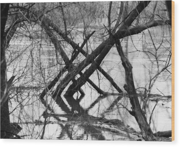 Photography Wood Print featuring the photograph Tree Line by Cynthia Ann Swan
