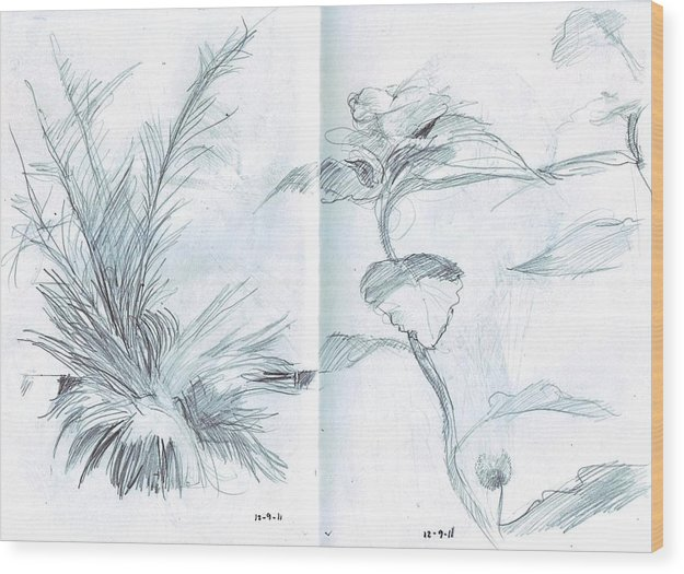 Pencil Wood Print featuring the drawing Plant Sketches by Kevin Russell