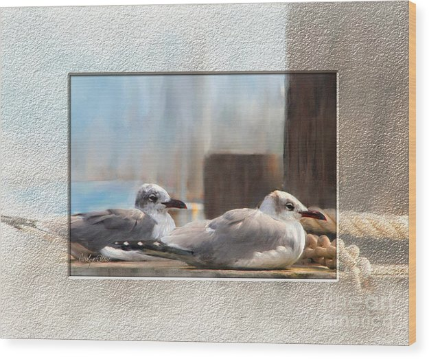 Seascape Birds Sea Birds Digital Media Wood Print featuring the painting A Place In The Sun by Carolyn Staut