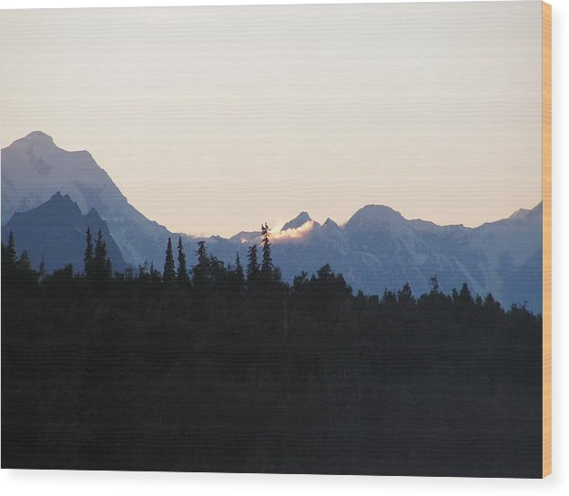 Landscape Wood Print featuring the photograph Danali by Giles b Liddell