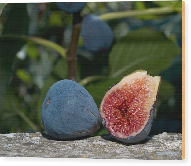 Fruit Wood Print featuring the photograph Ripe Figs by Jim DeLillo