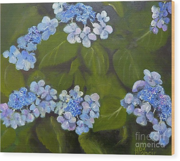 Floral Wood Print featuring the painting Hydrangea by Alma Pancir