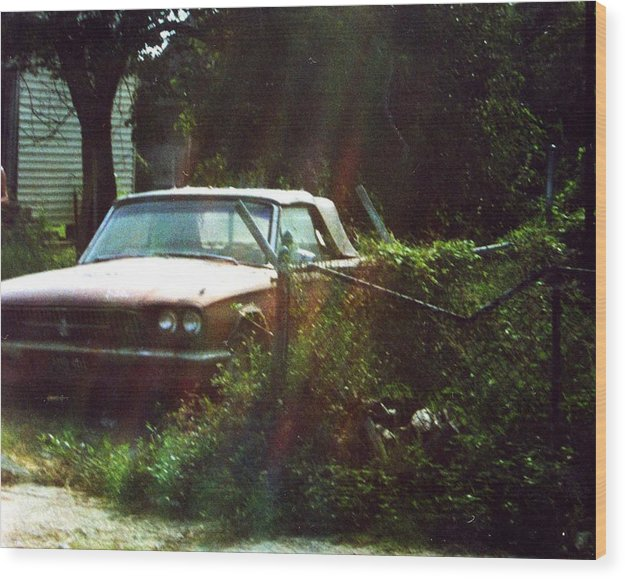 Car Wood Print featuring the photograph Stuck In Desire by Jennifer Ott