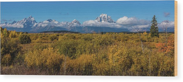 Willow Flats Wood Print featuring the photograph Looking Across Willow Flats To Mt Moran by Yeates Photography