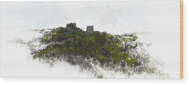 Landscape Wood Print featuring the painting Mountain Cottage In Fynbos by Ronald Rosenberg